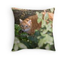 cat in the leaf Throw Pillow