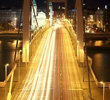Night Crossing by Duncan Payne
