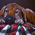 Christmas Puppy by Susan Bergstrom