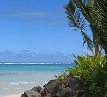 Cook Islands by lhyland