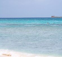 Grand Cayman Shoreline by hunter22375