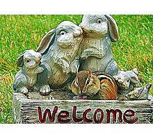 The sign said welcome Photographic Print