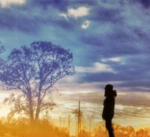 Sunset Contemplation Sticker