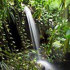 Waterfall by Joshua Rablin