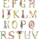 Insect Alphabet by bowerbirdblues