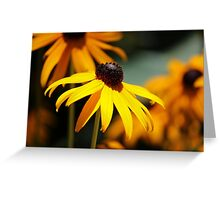 Shine on Me Greeting Card