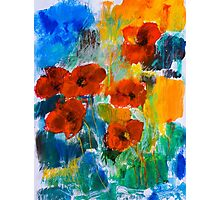 Wild Poppies Photographic Print