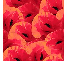 Summer pattern with poppies Photographic Print