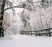 pretty winter by Mark Mcdonough