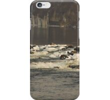 Cold Winter River iPhone Case/Skin