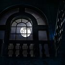 Midnight by Mary Ann Reilly