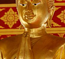 Gold Buddha Wai by Dave Lloyd