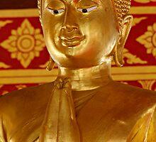 Gold Buddha Wai by Dave Lloyd
