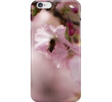 Blossom 3 iPhone Case/Skin
