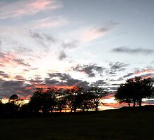 Chico, California: End of the Day by Skitty Vasquez