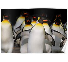 Walking Penguins II Poster