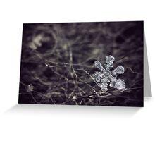 Crystalline Greeting Card