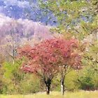 Valley Trees In Springtime by Jean Gregory  Evans