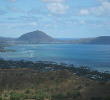 Koko Head Crater by Edith Farrell