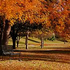 Fall Splendour by charlena