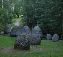 Magdalena Abakanowicz, 'Space of Unknown Growth', Europos Parkas by Donald Williams