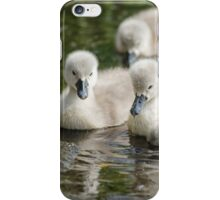 Cygnets 05 iPhone Case/Skin