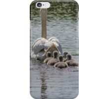 Farewell to Cygnets iPhone Case/Skin