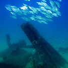 Formation over HMS Maori by DiveDJ