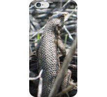 Lizard, My Lizard. iPhone Case/Skin