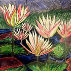 Waterlilies by Alexandra Felgate