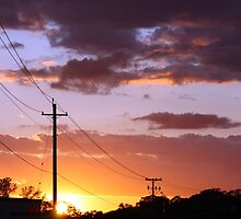 Powerlines & Sunsets by Laurie Puglia