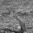 The Paris Grid by Magi
