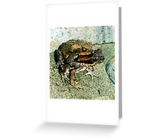 Frogs Humping Greeting Card