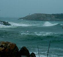 Atlantic Storm by Robyn Bohlen