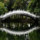 Chinese Bridge by twiart