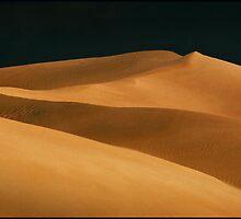 'Dune'  - Fowler Bay S.Australia by Albert Sulzer