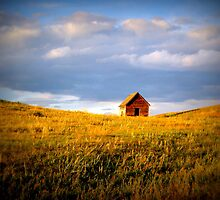 Middle of Nowhere by Leanna Lomanski