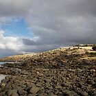 seascapes #217, rocky beach by stickelsimages