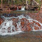 Buley Rockhole ,Litchfield National Park, Northern Territory, Australia by Adrian Paul