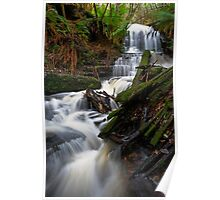 Myrtle Gully Falls Poster
