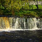 Wainwath Force at Keld -Yorkshire Dales by Trevor Kersley