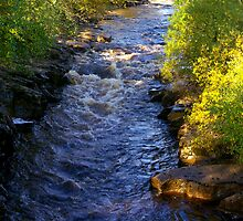 River Swale at Keld - Yorkshire Dales by Trevor Kersley