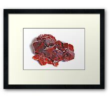 Pointedly Red Framed Print
