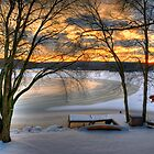 Andover Lake Winter by Roger Maynard