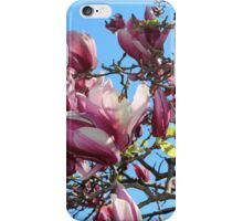 Nature - Pink flowers in full bloom iPhone Case/Skin