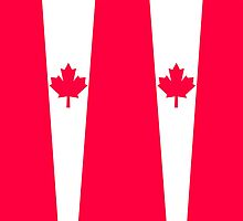 Canadian flag  by filippobassano
