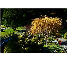 A Day At The Garden Photographic Print