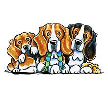 3 Beagles Photographic Print