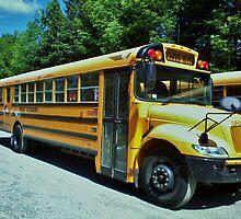 Public School Bus - New York by clarebearhh