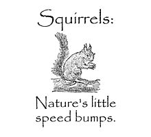 Squirrels Speed Bumps by TheBestStore